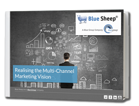 Bluesheep_multivision_eBook_Thumbnail