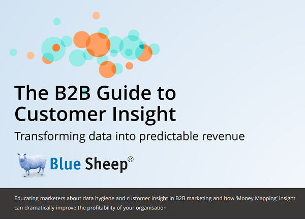 B2B Guide to Customer Insight