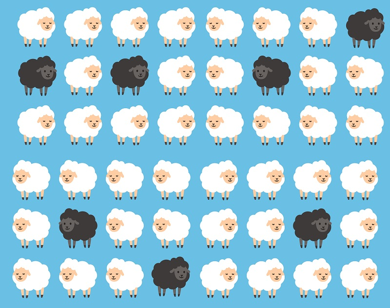 Matching sheep