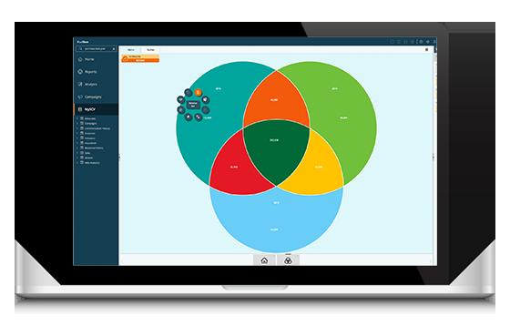 Blue Insight - Data Driven Marketing Solution