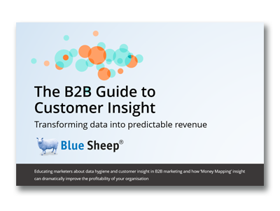 The B2B Guide to Customer Insight