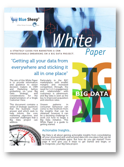 Big Data Strategy Guide